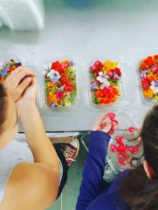 barquette_fleurs