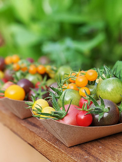 mix_tomates